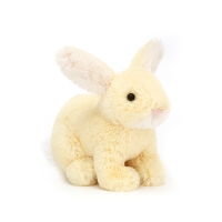 Minilop Lemon Bunny Tiny